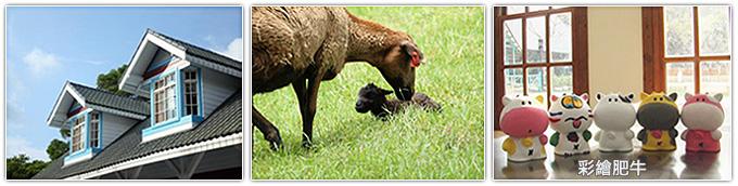飛牛牧場-彩繪肥牛
