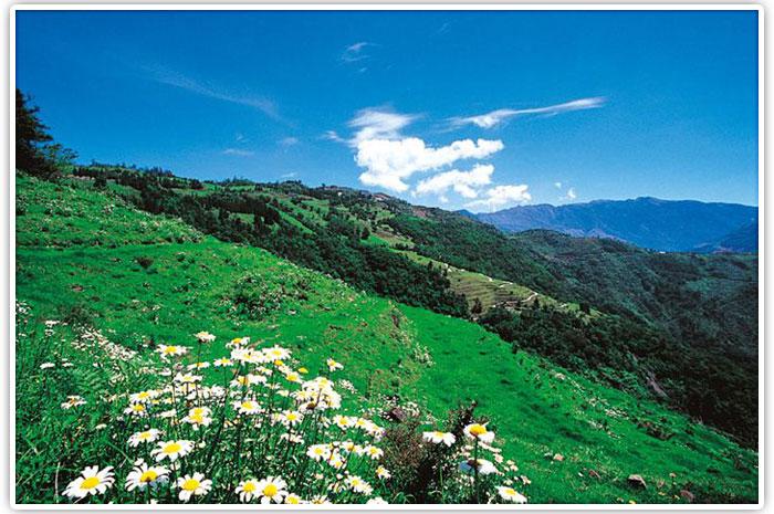 清境綠楊景觀溫泉山莊